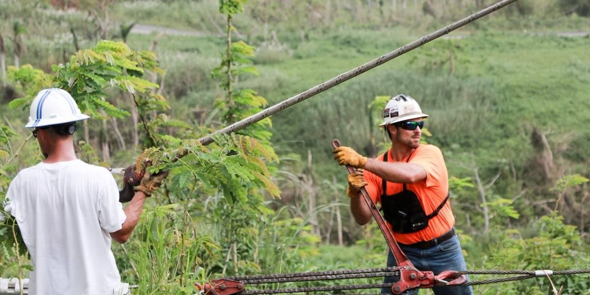 Whitefish pide que cesen las agresiones contra sus trabajadores