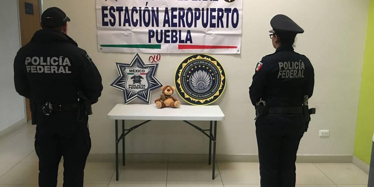 Policía Federal decomisa oso de peluche relleno de marihuana en Puebla