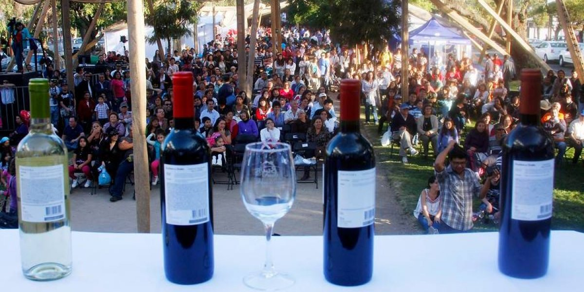 Isla de Maipo produce excelente vino y convoca al turismo internacional