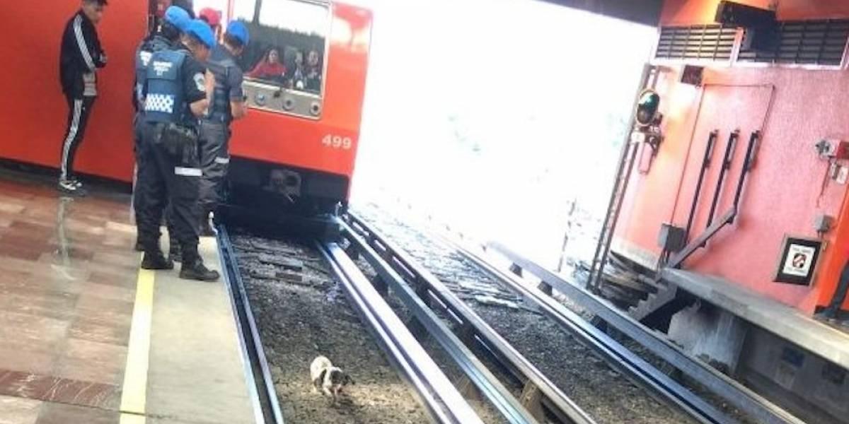 Reinicia servicio en estaciones de L12 dañadas por sismo