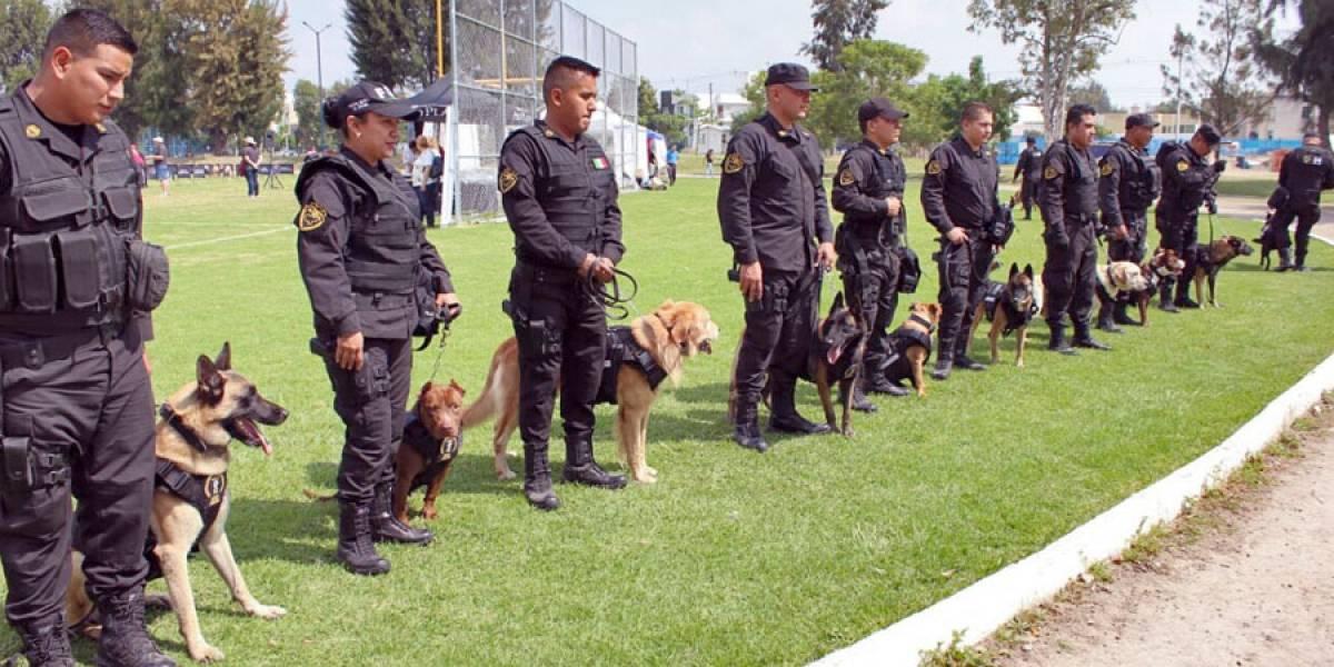 Jubilan con honores a nueve destacados perros policías