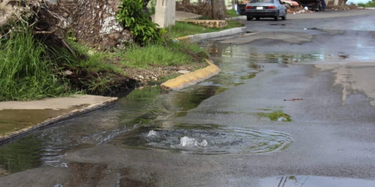 Falla en bombas de la AAA en Loíza genera problema de salud pública