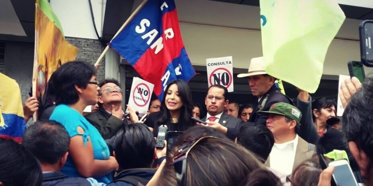 Pamela Aguirre presenta 'Amicus Curiae' a favor de la reelección indefinida