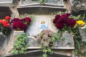 cementeriogeneral9-abe7a4132a3b9768254a6b573800a6c3.jpg