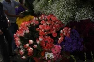cementeriosventadefloresfotoomar10-6f559c82dc9b9ed475ae011c1cf5f92f.jpg