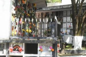 cementeriosventadefloresfotoomar24-b1232c63131ad355d411d418a260e7e5.jpg