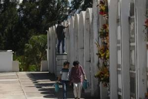 cementeriosventadefloresfotoomar42-71a48b28d4002b1e3356e4a367781659.jpg