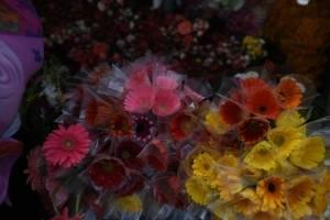 cementeriosventadefloresfotoomar5-220af25a1c2a8b9234d7d0a7ca8aa655.jpg