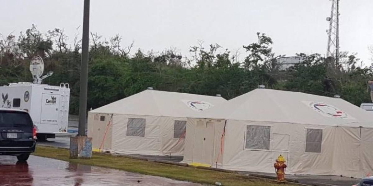 Arecibo atenderá la salud de sus veteranos
