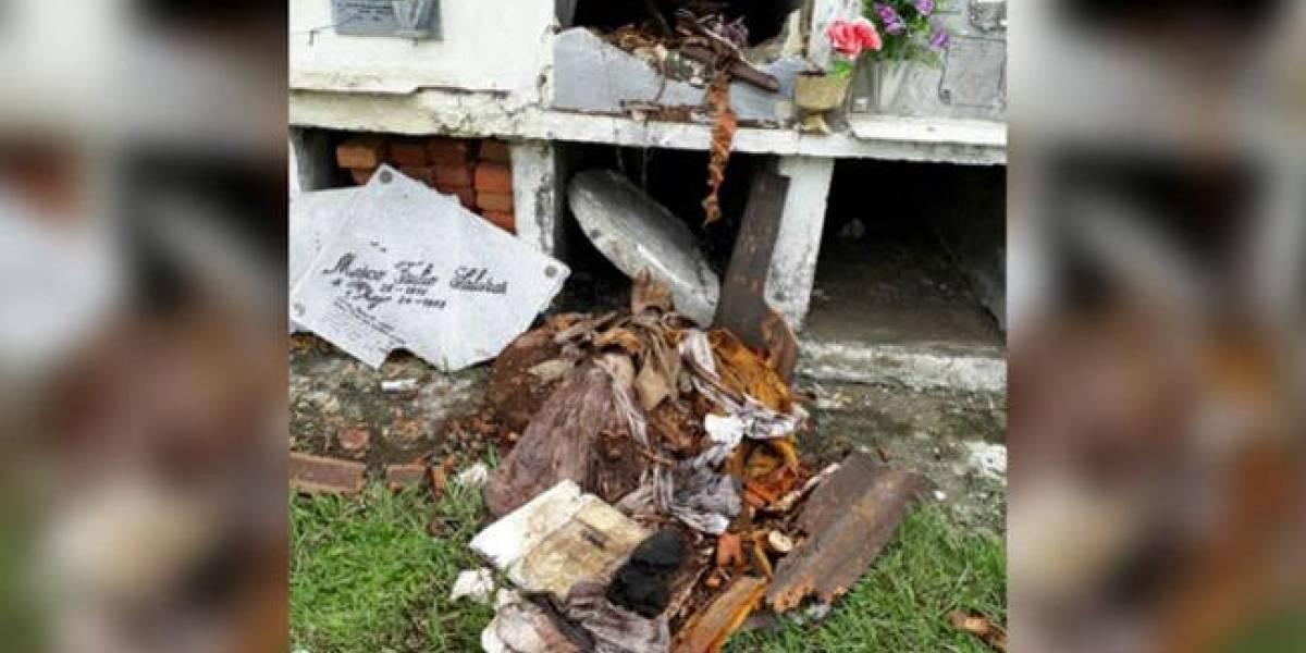 Sectas satánicas serían las responsables del saqueo de tumbas en Halloween