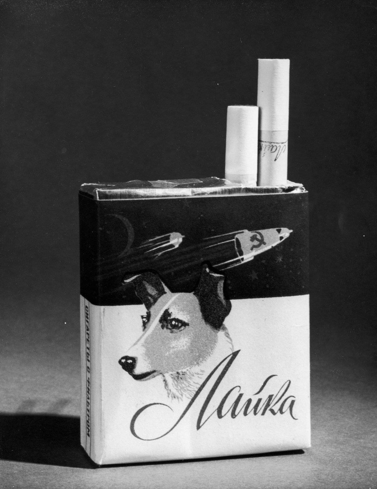 Se le recordó hasta en cajetillas de cigarros Foto: Getty Images