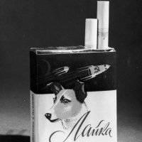 El viaje de Laika