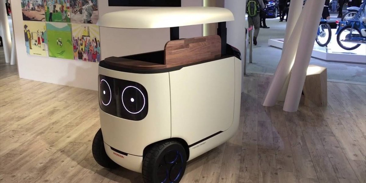 RoboCas: El robot que es compañero, transporte, tienda y maleta