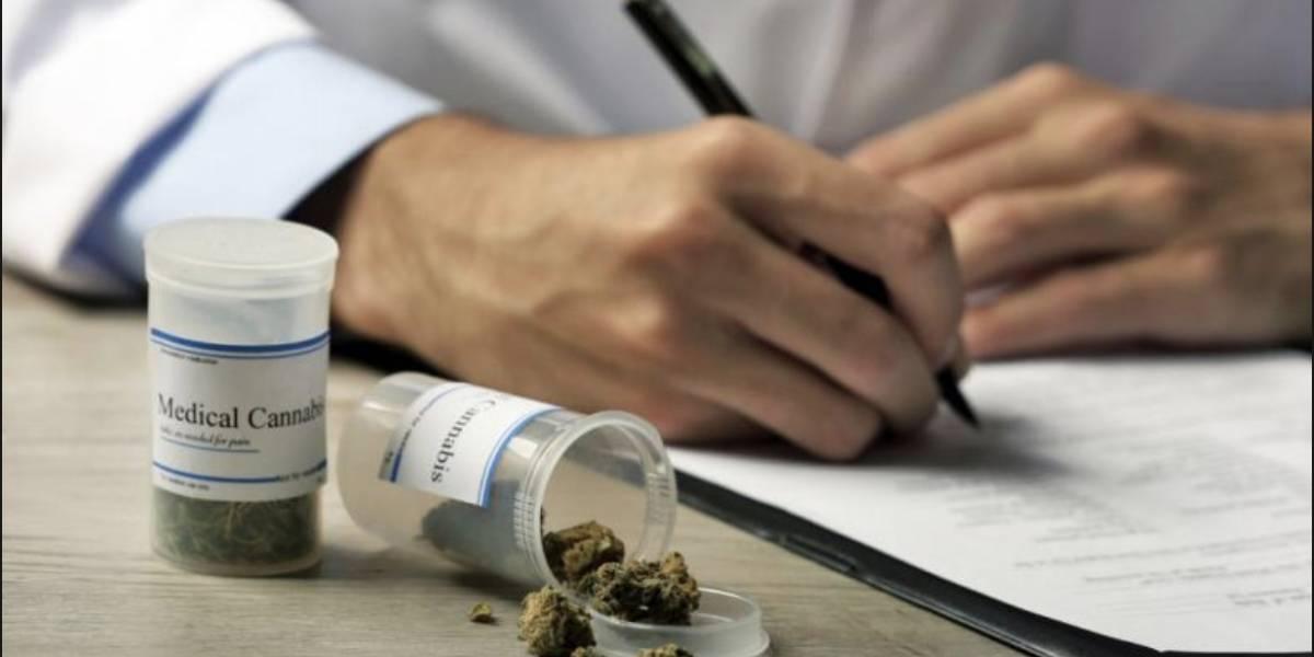 Ahora puedes estudiar para ser un experto en marihuana