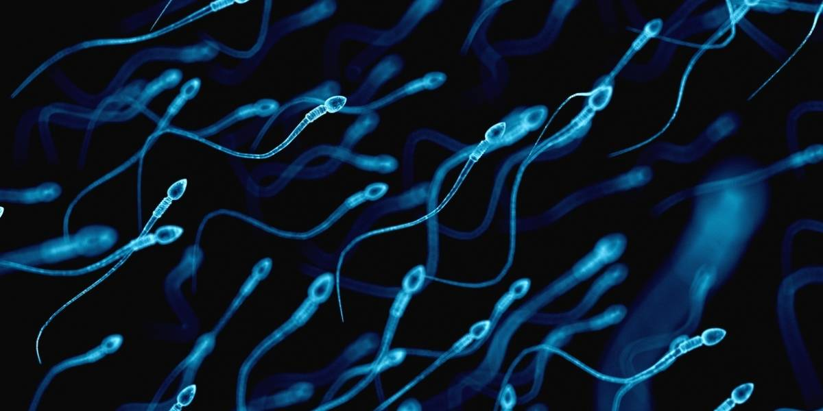 Alarma de coronavirus: podría producir infertilidad masculina
