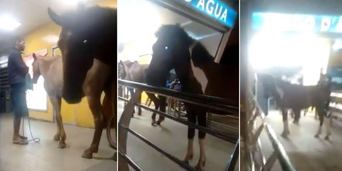 Vídeo mostra homem tentando entrar com cavalos em estação do BRT no Rio