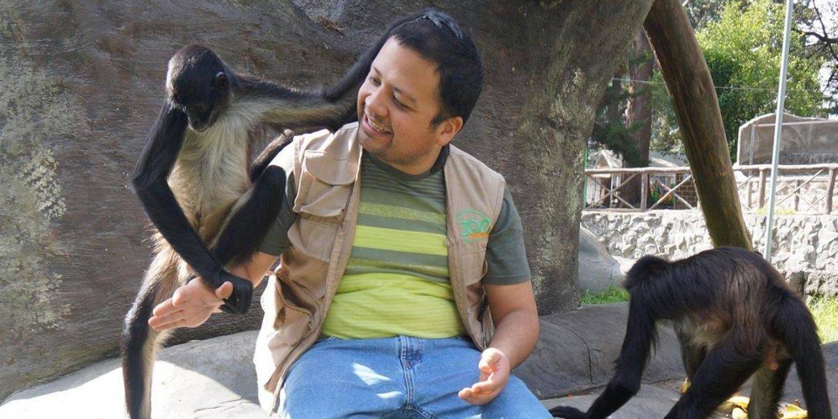 Durante día de descanso, roban varias especies en zoológico de Xela