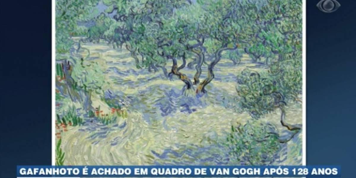 Gafanhoto é achado em quadro de Van Gogh após 128 anos
