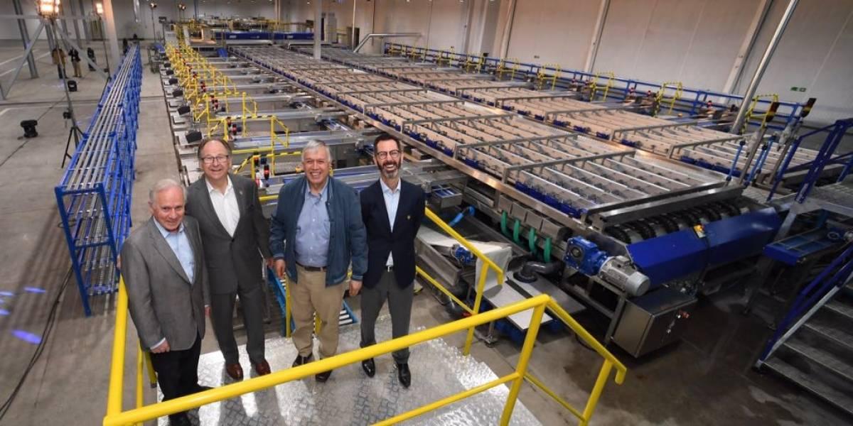 Inauguran línea de procesamiento de cerezas más moderna de Chile