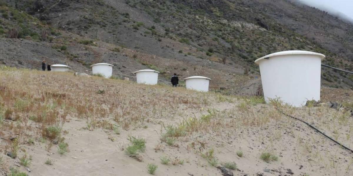 """De """"malla kiwi"""" a grandes contenedores: entregan concesión gratuita para atrapanieblas en el desierto"""