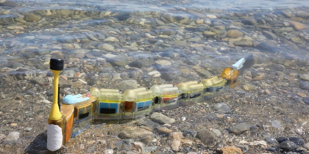 Anguila robot puede rastrear contaminantes del agua