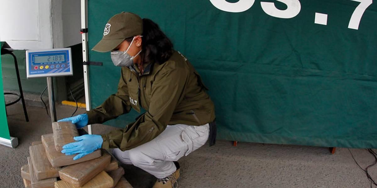Policía decomisa en norte Chile más de media tonelada de marihuana
