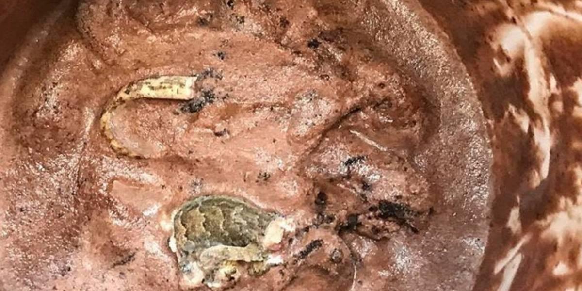 Encontró un reptil dentro del balde de helado de chocolate que se estaba comiendo