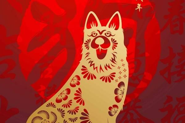 año del perro de tierra