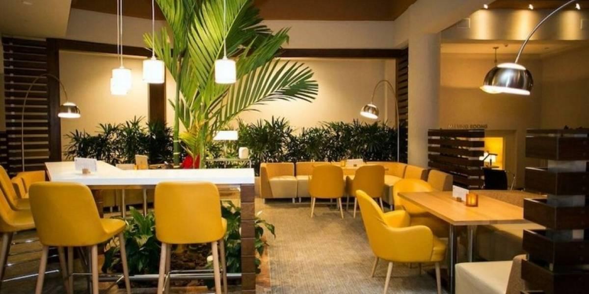 Cadena Hilton informa están abiertos los restaurantes