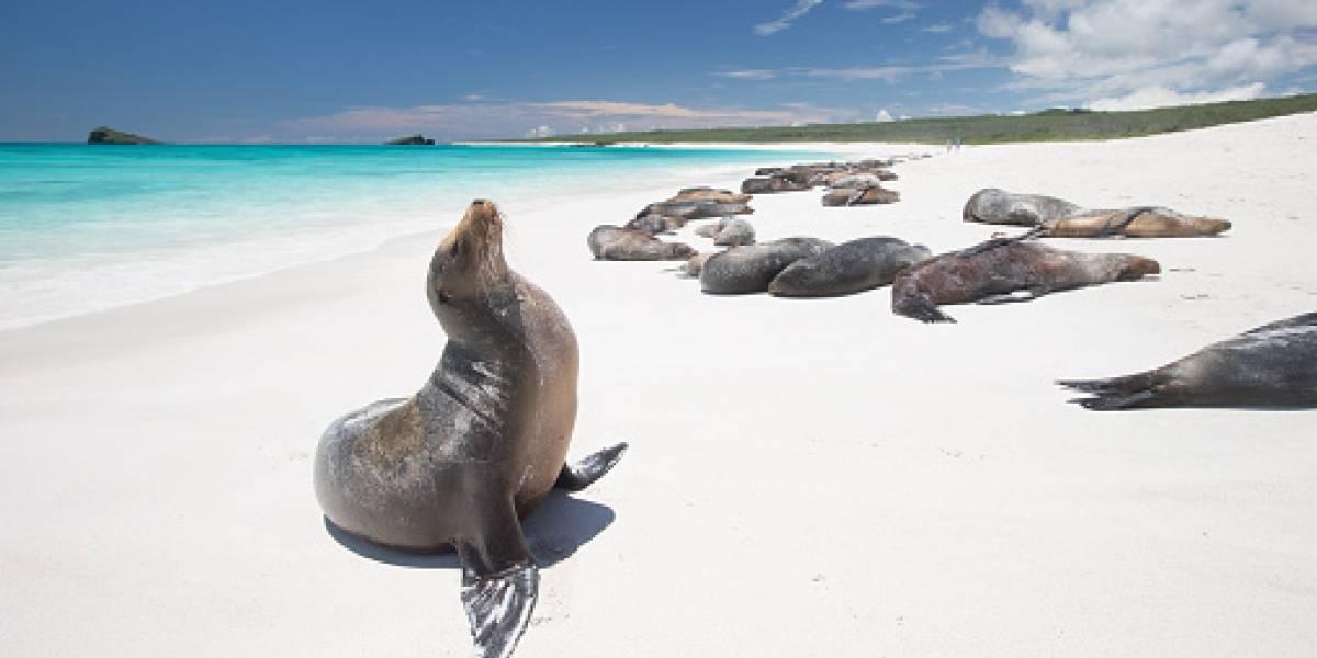 Las Islas Galápagos entre los sitios naturales amenazados por el cambio climático