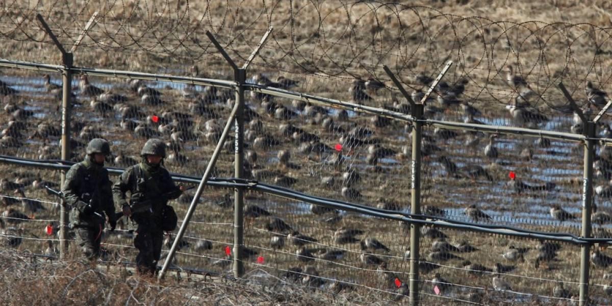 La inusual deserción de un soldado Corea del Norte que escapó al Sur por la Zona Desmilitarizada, una de las fronteras más custodiadas del mundo
