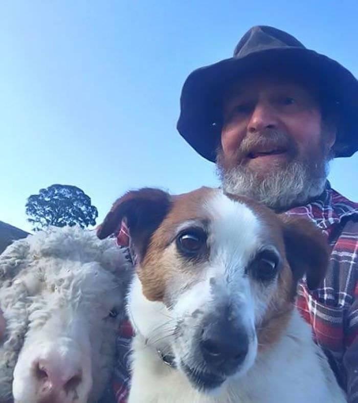 Selfies com os animais