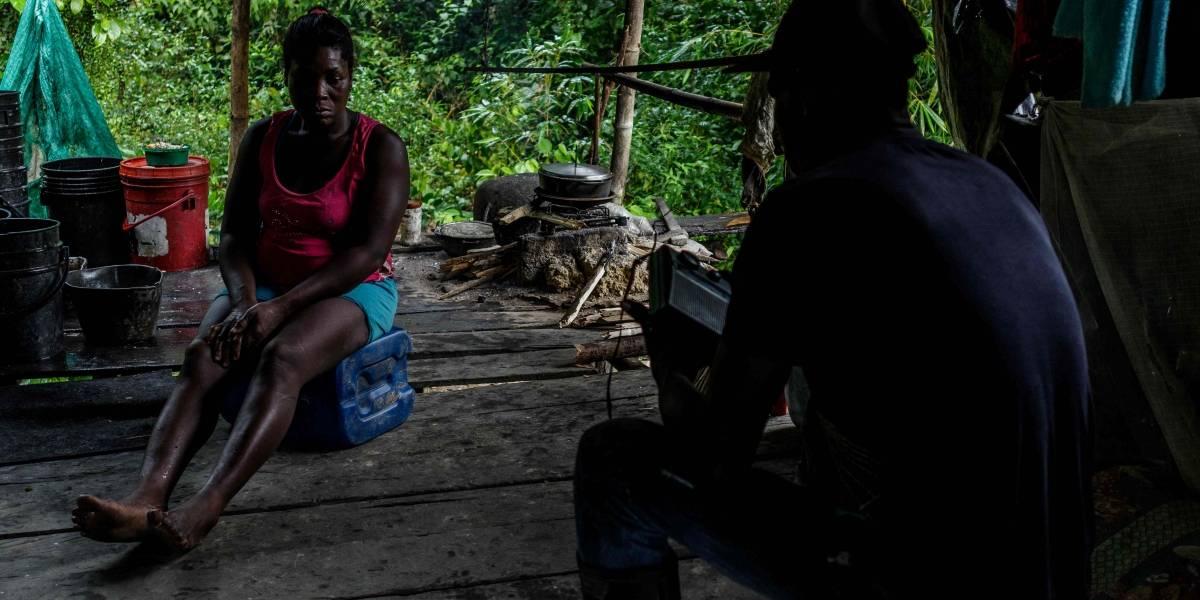 La coca: el mal que está matando al Chocó y que parece no tener cura