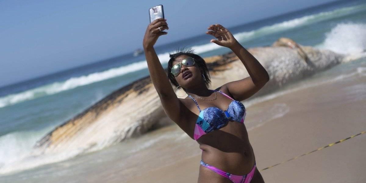 Cadáver de ballena jorobada sirve de 'fondo para selfies' en playa de Ipanema
