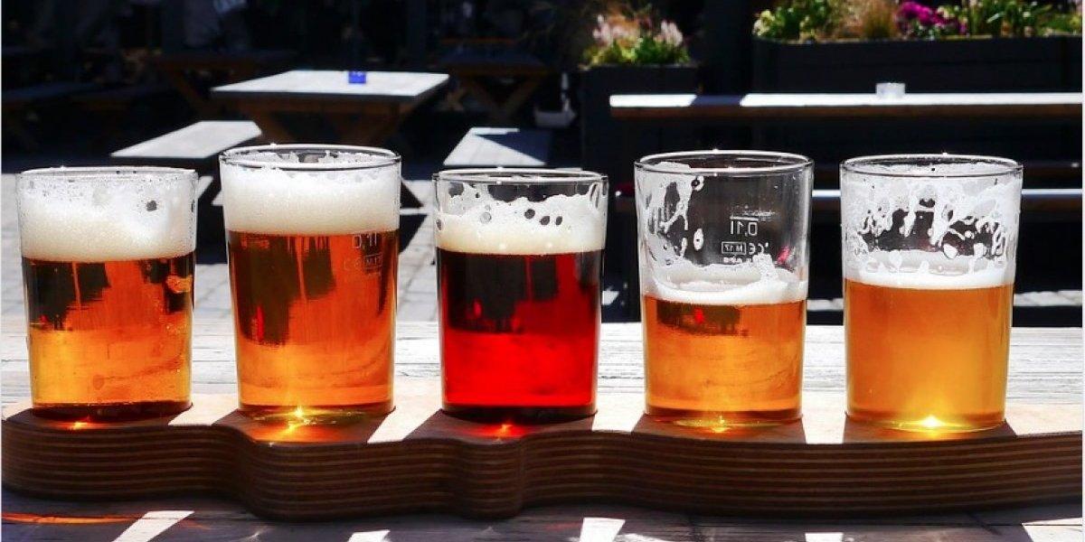 Conviértete en un experto en cerveza
