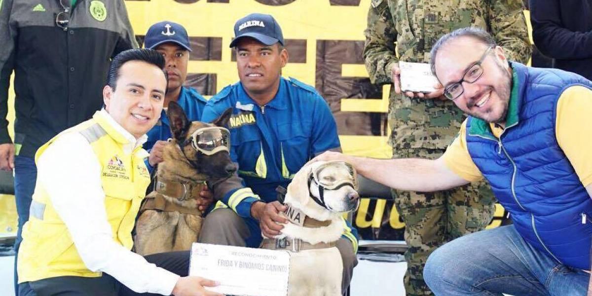 Construyen clínica inspirada en perros rescatistas del 19 de septiembre