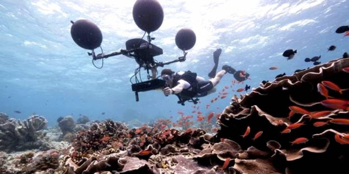 """Cómo suena el fondo del mar y cómo lo recreó el documental de la BBC """"Blue Planet II"""""""