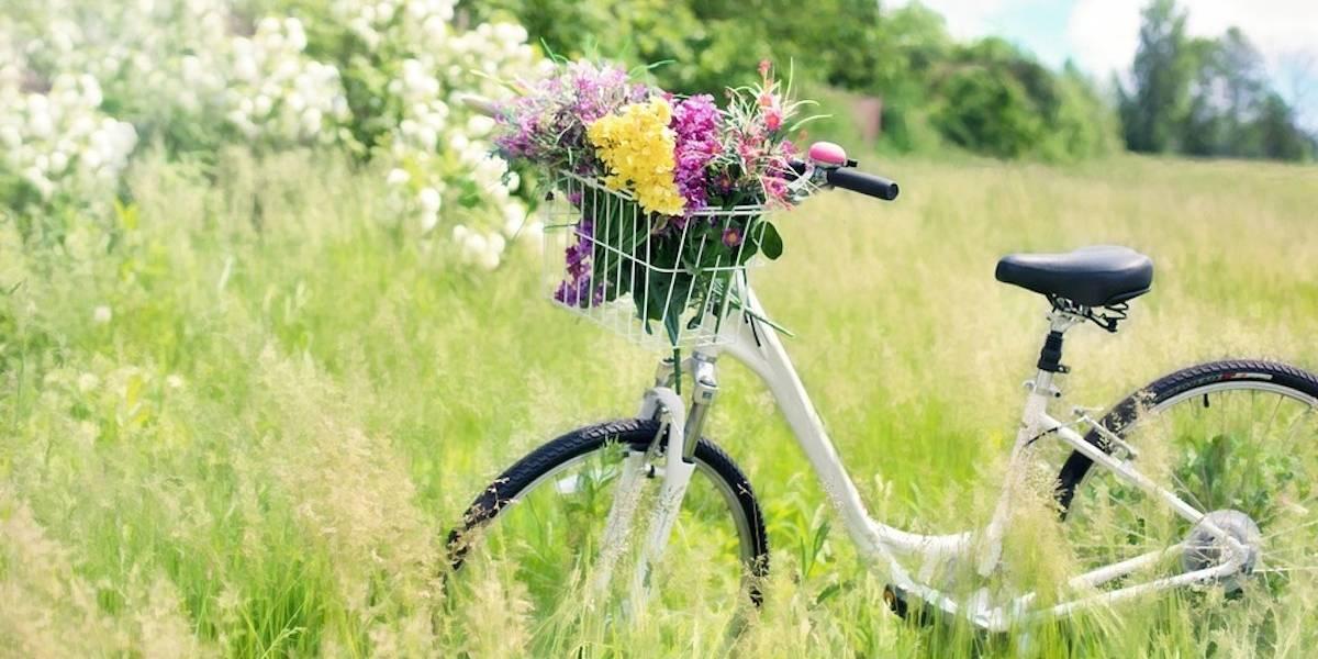 Consejos para comprar una bicicleta