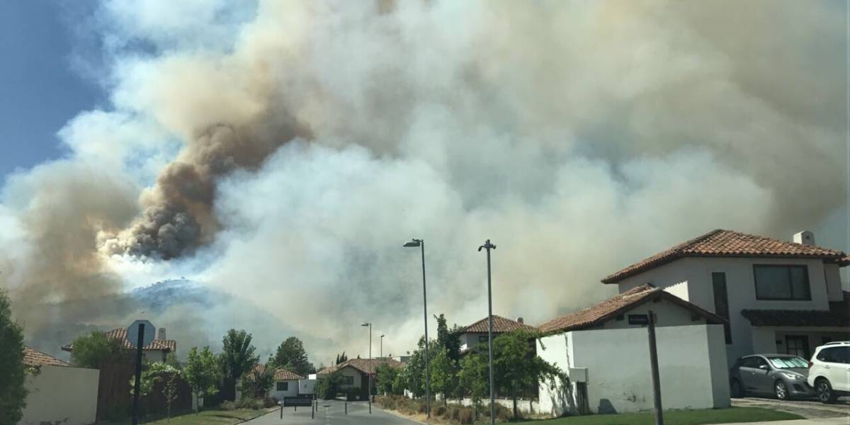 Conaf moviliza brigadas por extenso incendio de pastizales en Chicureo