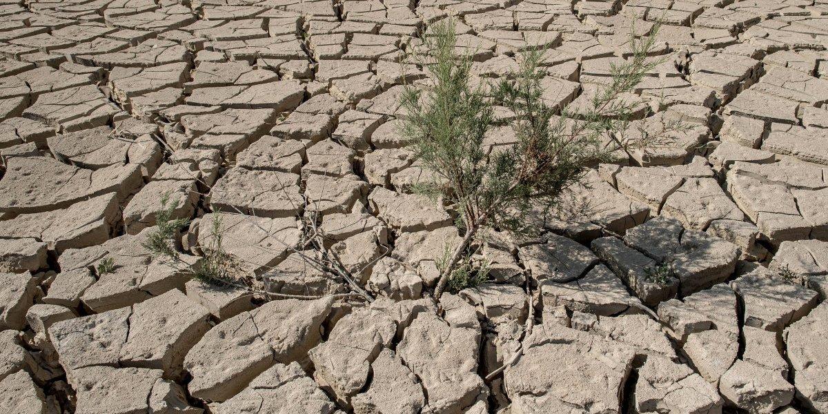 Las desesperadas medidas que Portugal analiza para combatir su sequía más grave