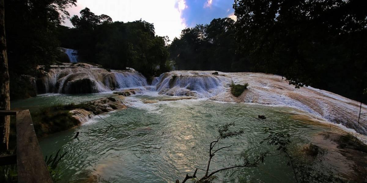 Cascadas de Agua Azul recuperan su cauce al 100%