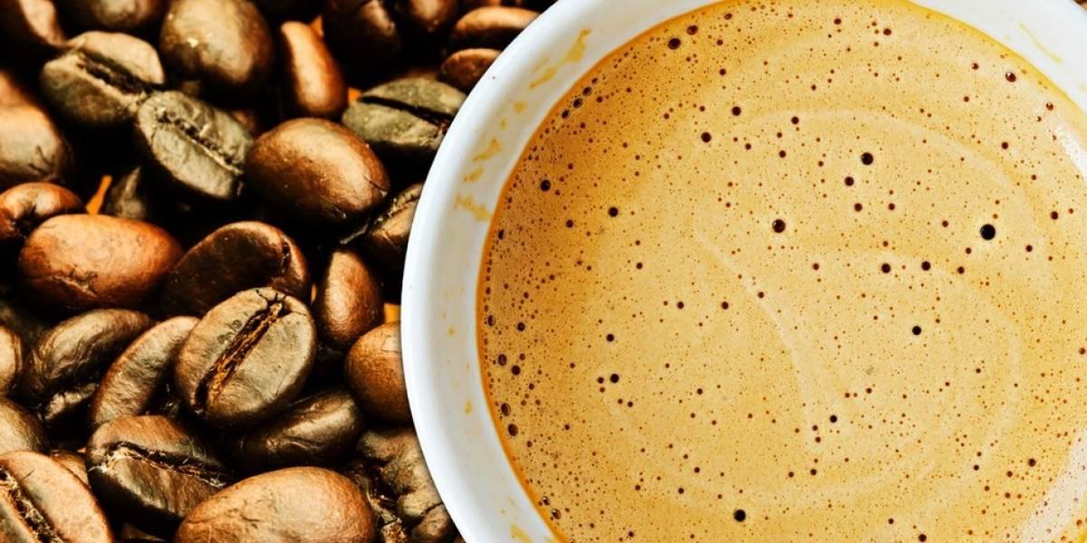 Beber três xícaras de café por dia pode ser melhor que ficar sem a bebida