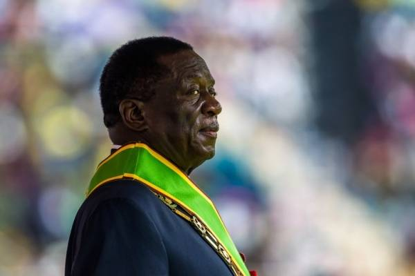 cocodrilo Zimbabue