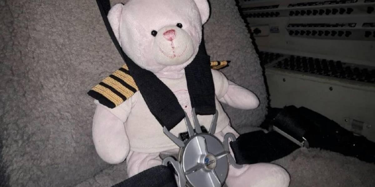 La bella historia del osito que viajó en primera clase y voló más de 300 kilómetros para reencontrase con su pequeña dueña