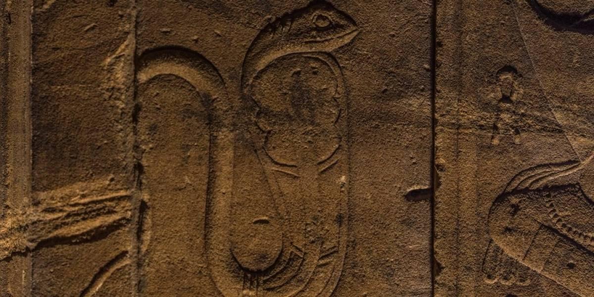 ¿Qué es la serpiente del faraón que tanto interesa a algunos científicos?