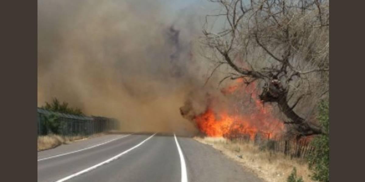 Declaran alerta roja en Til Til por incendio forestal: centro del Sename y cárcel Punta Peuco requieren ayuda por su cercanía