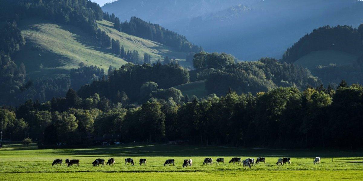 El pueblo suizo que paga 70 mil dólares a quién se mude allá