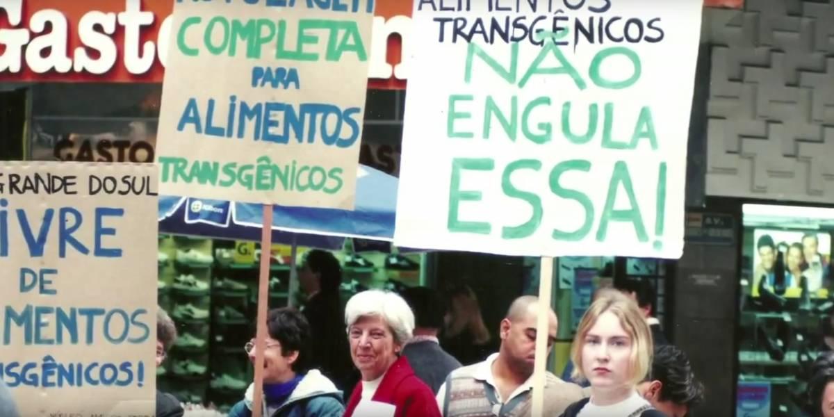 Documentário Substantivo Feminino, sobre ambientalistas gaúchas, é premiado na Itália