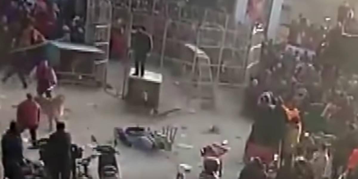 Tigres matan a dueño de un circo y juegan con su cuerpo
