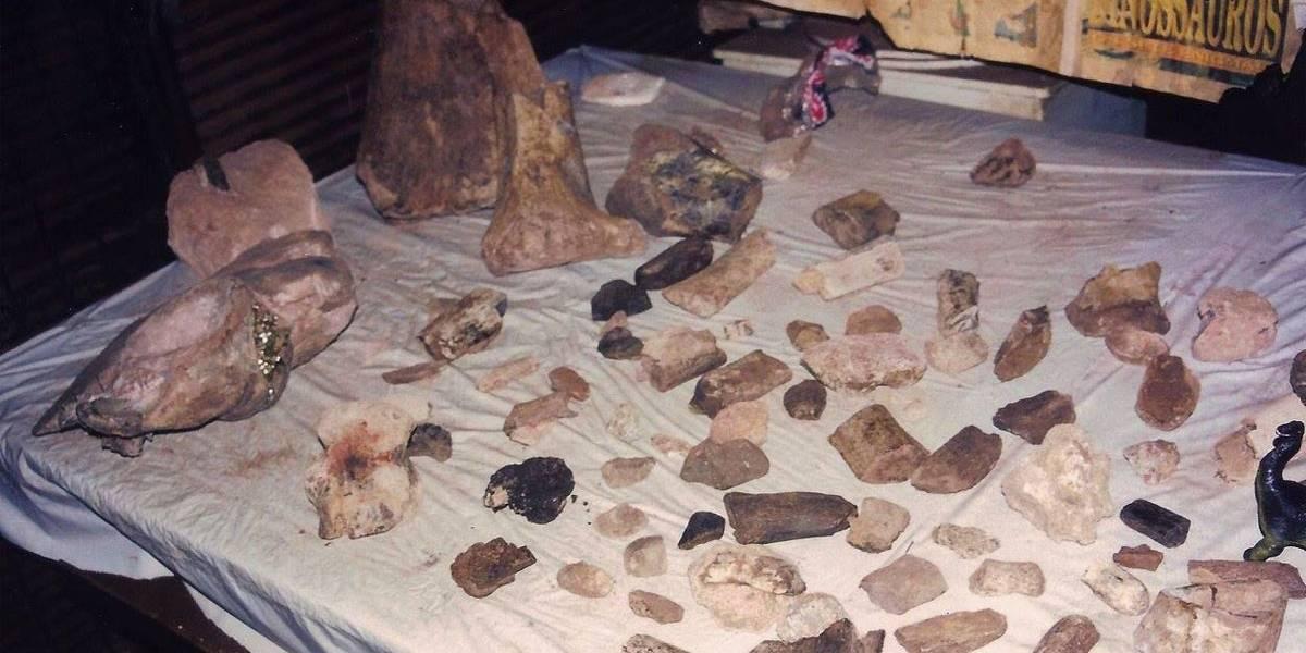 Morador acha parte de osso de dinossauro durante obra no interior de SP